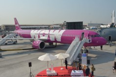 DSC_0098 Airbus A321-253N TF-SKY WOW Air