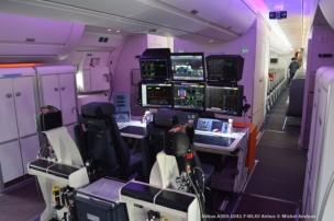 DSC_0076 Airbus A350-1041 F-WLXV Airbus © Michel Anciaux