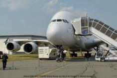 DSC_0493 Airbus A380-861 F-WWDD Airbus-Musée de l_Air et de l_Espace © Michel Anciaux