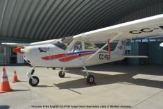 105 Tecnam P-92 Eaglet CC-PXR Toqui Aero Servicios Ltda © Michel Anciaux