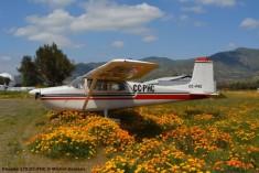 DSC_0022 Cessna 175 CC-PHC © Michel Anciaux