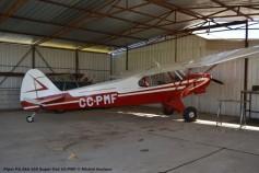 DSC_0094 Piper PA-18A-150 Super Cub CC-PMF © Michel Anciaux