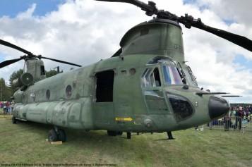 IMG_1471 Boeing CH-47D Chinook (414) ''D-666'' Royal Netherlands Air Force © Hubert Creutzer