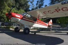 DSC_0006 Piper PA-18-150 Super Cub CC-PGK Aerotrust Servicio Limitada © Michel Anciaux