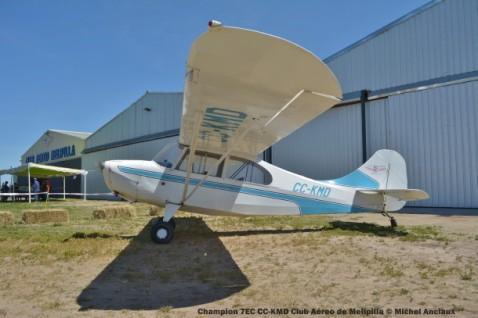 DSC_0082 Champion 7EC CC-KMD Club Aéreo de Melipilla © Michel Anciaux
