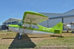 DSC_0088 Champion 7EC CC-PIZ Club Aéreo de Melipilla © Michel Anciaux