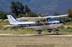 DSC_0160 Cessna 172N Skyhawk CC-PRZ (private) © Michel Anciaux