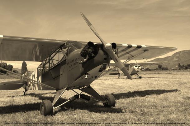 DSC_0292 Piper J3C-65 CC-POV (private) & Champion 7EC CC-PWL (private) © Michel Anciaux