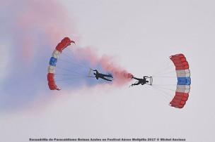 DSC_0476 Escuadrilla de Paracaidismo Boinas Azules en Festival Aéreo Melipilla 2017 © Michel Anciaux