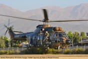 DSC_1111 Airbus Helicopters AS 532AL Cougar ''H280'' Ejercito de Chile © Michel Anciaux