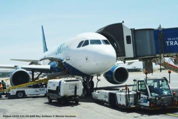 DSC_0430 Airbus A319-111 CC-AHE Sky Airlines © Michel Anciaux