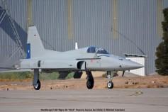 010 Northrop F-5E Tigre III ''813'' Fuerza Aerea de Chile © Michel Anciaux