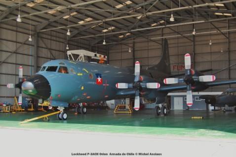 046 Lockheed P-3ACH Orion Armada de Chile © Michel Anciaux