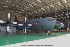 047 Lockheed P-3ACH Orion Armada de Chile © Michel Anciaux