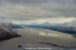img280 Turnagin Arm © Michel Anciaux