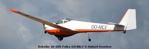 DSC_4508 Scheibe SF-25C Falke OO-MLV © Hubert Creutzer