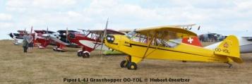 DSC_4573 Piper L-4J Grasshopper OO-YOL © Hubert Creutzer