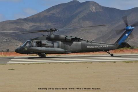 DSC_0145 Sikorsky UH-60 Black Hawk ''H-02'' FACh © Michel Anciaux