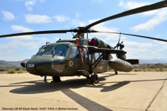 DSC_0173 Sikorsky UH-60 Black Hawk ''H-02'' FACh © Michel Anciaux