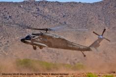 DSC_0199 Sikorsky UH-60 Black Hawk ''H-02'' FACh © Michel Anciaux