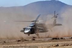 DSC_1432 Sikorsky UH-60 Black Hawk ''H-02'' FACh © Michel Anciaux