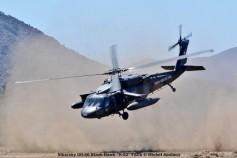 DSC_1436 Sikorsky UH-60 Black Hawk ''H-02'' FACh © Michel Anciaux