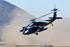 DSC_1437 Sikorsky UH-60 Black Hawk ''H-02'' FACh © Michel Anciaux