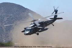 DSC_1438 Sikorsky UH-60 Black Hawk ''H-02'' FACh © Michel Anciaux