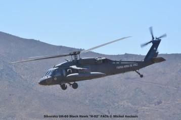 DSC_1446 Sikorsky UH-60 Black Hawk ''H-02'' FACh © Michel Anciaux