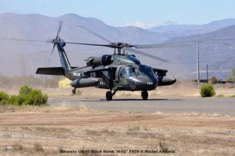 DSC_1474 Sikorsky UH-60 Black Hawk ''H-02'' FACh © Michel Anciaux