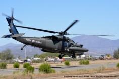 DSC_1485 Sikorsky UH-60 Black Hawk ''H-02'' FACh © Michel Anciaux