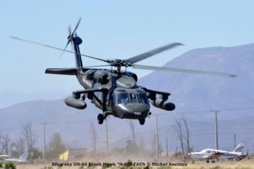 DSC_1507 Sikorsky UH-60 Black Hawk ''H-02'' FACh © Michel Anciaux