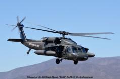 DSC_1514 Sikorsky UH-60 Black Hawk ''H-02'' FACh © Michel Anciaux