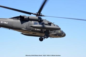 DSC_1517 Sikorsky UH-60 Black Hawk ''H-02'' FACh © Michel Anciaux