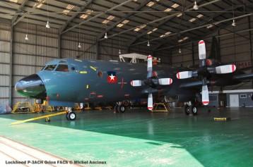 img792 Lockheed P-3ACH Orion FACh © Michel Anciaux
