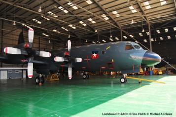 img793 Lockheed P-3ACH Orion FACh © Michel Anciaux