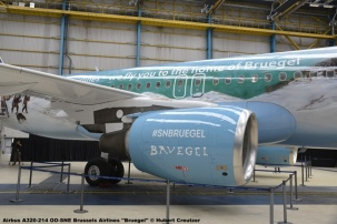 DSC_7865 Airbus A320-214 OO-SNE Brussels Airlines ''Bruegel'' © Hubert Creutzer