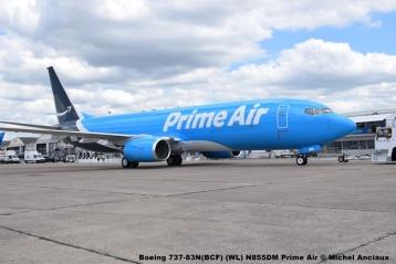 DSC_0048 Boeing 737-83N(BCF) (WL) N855DM Prime Air © Michel Anciaux