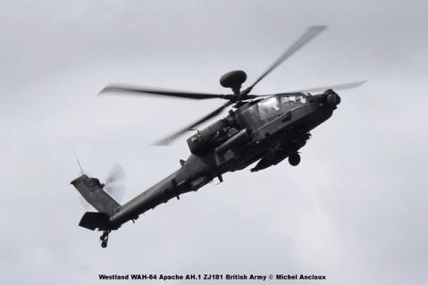 DSC_02256 Westland WAH-64 Apache AH.1 ZJ181 British Army © Michel Anciaux