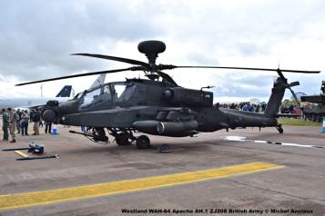 DSC_0594 Westland WAH-64 Apache AH.1 ZJ208 British Army © Michel Anciaux