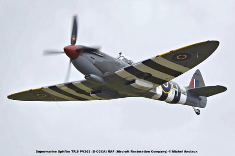 DSC_1222 Supermarine Spitfire TR.9 PV202 (G-CCCA) RAF (Aircraft Restoration Company) © Michel Anciaux