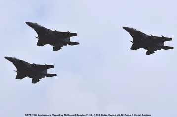 DSC_1986 NATO 70th Anniversary Flypast by McDonnell Douglas F-15C- F-15E Strike Eagles US Air Force © Michel Anciaux
