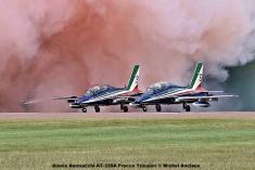 DSC_2079 Alenia Aermacchi AT-339A Frecce Tricolori © Michel Anciaux