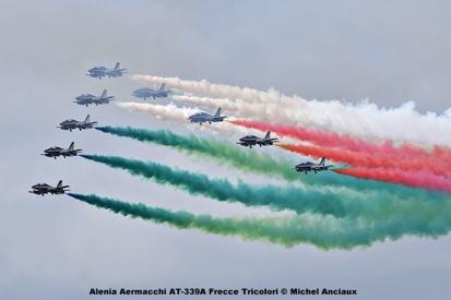 DSC_2185 Alenia Aermacchi AT-339A Frecce Tricolori © Michel Anciaux