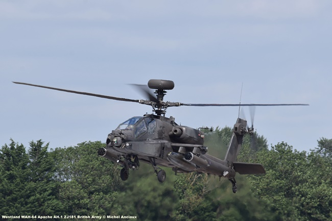 DSC_2263 Westland WAH-64 Apache AH.1 ZJ181 British Army © Michel Anciaux