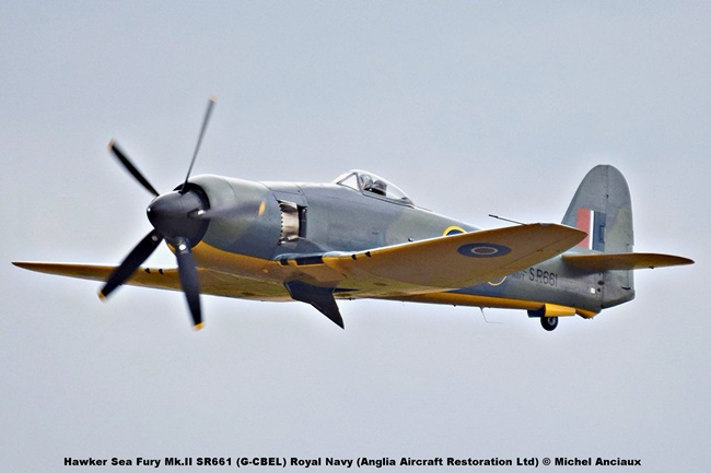 DSC_2941 Hawker Sea Fury Mk.II SR661 (G-CBEL) Royal Navy (Anglia Aircraft Restoration Ltd) © Michel Anciaux