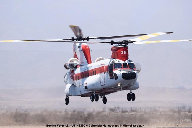 DSC_0012 Boeing-Vertol 234UT N239CH Columbia Helicopters © Michel Anciaux