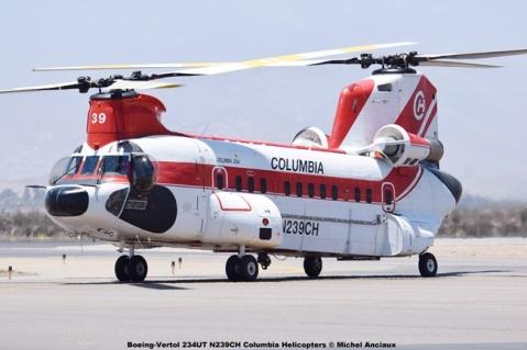 DSC_0036 Boeing-Vertol 234UT N239CH Columbia Helicopters © Michel Anciaux