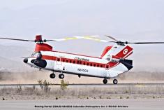 DSC_0095 Boeing-Vertol 234LR N245CH Columbia Helicopters Inc © Michel Anciaux