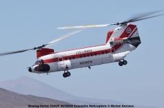 DSC_0116 Boeing-Vertol 234UT N239CH Columbia Helicopters © Michel Anciaux